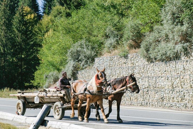 Le villageois roumain monte un chariot hippomobile images libres de droits