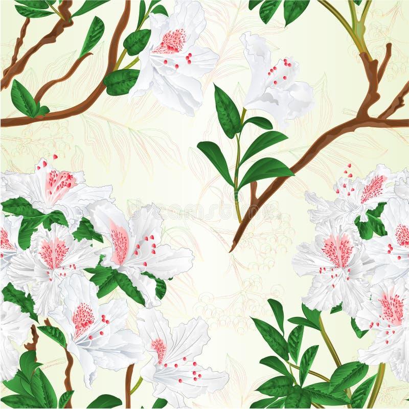 Le vintage blanc de baie d'arbuste et de sorbe de montagne de branche de rhododendron de texture sans couture dirigent l'illustra illustration libre de droits