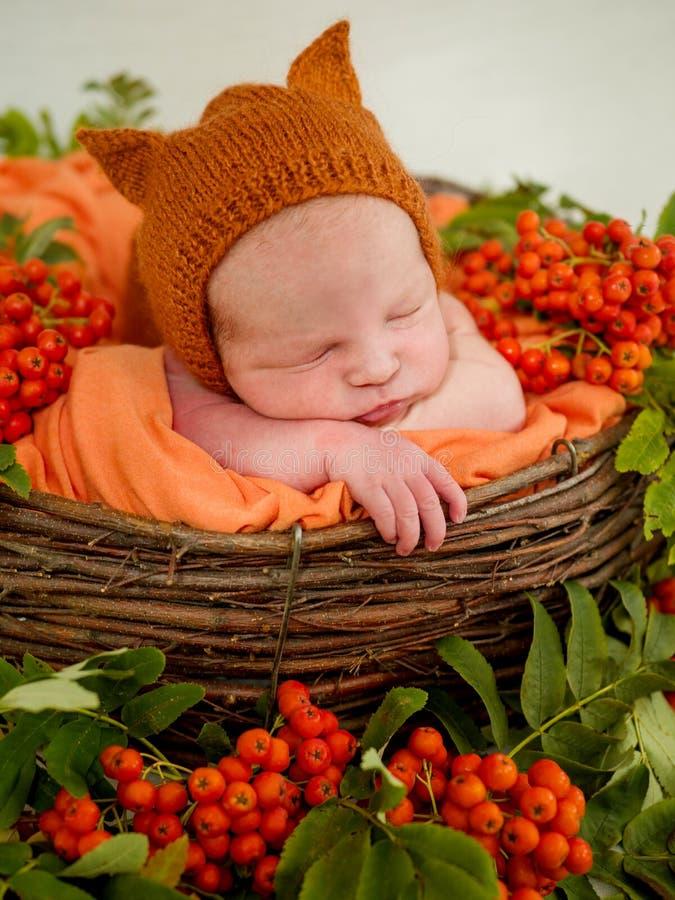 Le visage d'un sommeil nouveau-né dans le panier photographie stock