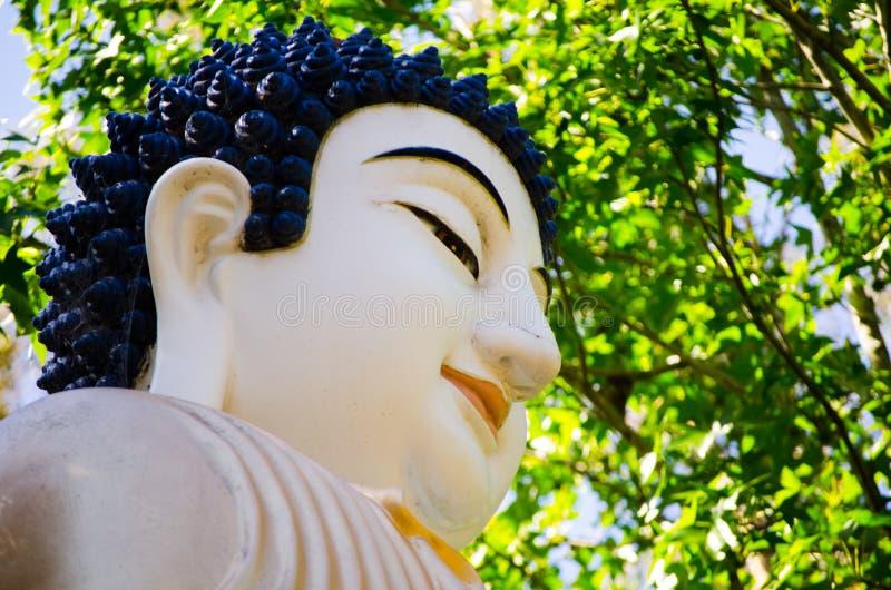 Le visage de sourire de la statue de Bouddha en plan rapproché avec le vert quitte le jardin au fond image libre de droits