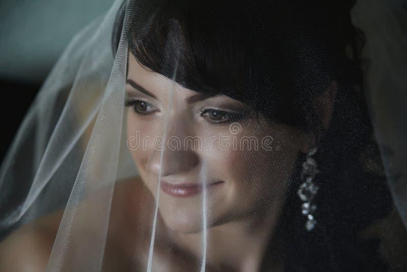 Le visage du ` s de jeune mariée sous le plan rapproché de voile photographie stock libre de droits