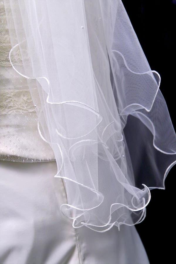 Le voile de la mariée image libre de droits