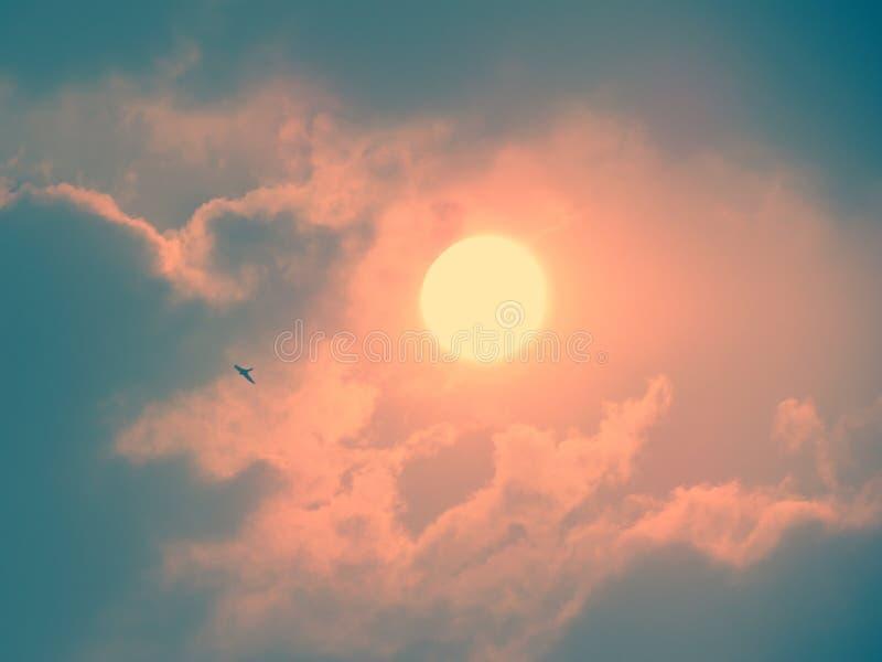Le vol d'oiseau pendant le matin avec le lever de soleil brille doucement parmi les nuages image libre de droits