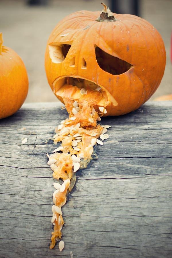 Le vomi de potiron de Halloween jettent sur le tronc d'arbre photo libre de droits
