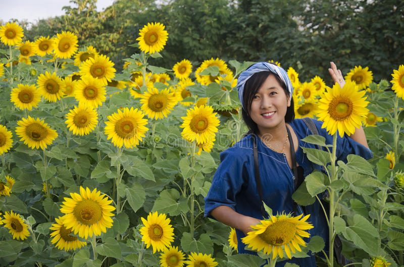 Le voyage thaïlandais asiatique de femme et la pose pour prennent la photo au gisement de tournesol photo libre de droits