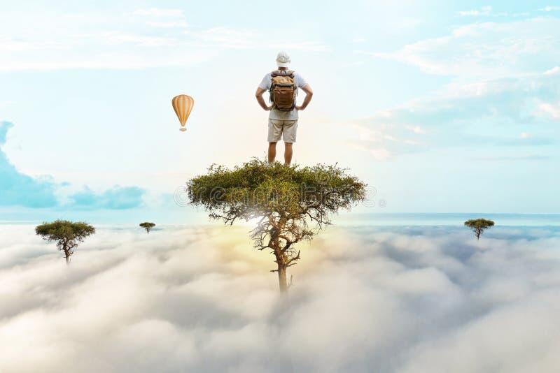 Le voyageur a grimpé à un arbre grand et a regardé les environs photos libres de droits