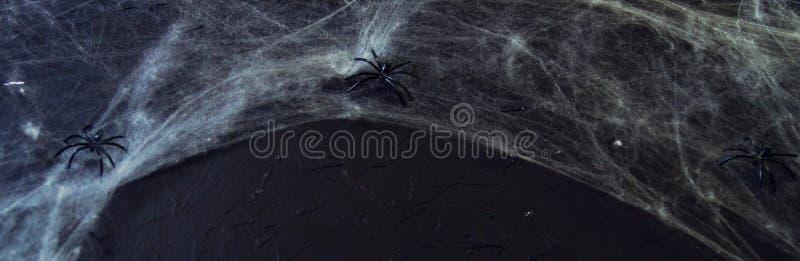 Le Web du ` s de toile d'araign?e ou d'araign?e sur un fond noir, ?tre employ? comme recouvrement pour Halloween con?oit photo stock