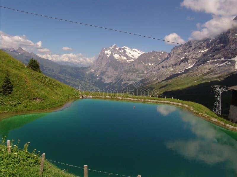 Le Wetterhorn et l'étang alpestre images libres de droits