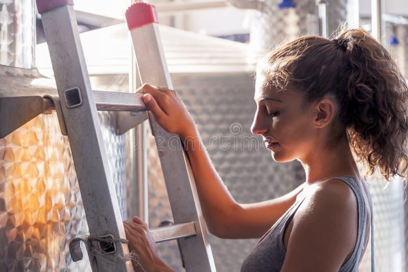 Le winemaker féminin commande la qualité du vin image libre de droits