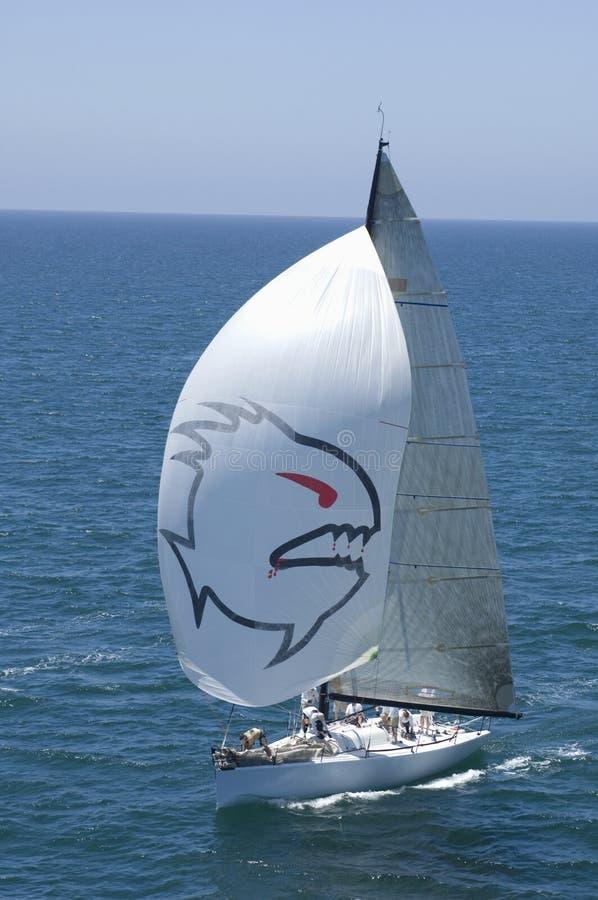 Le yacht concurrence en Team Sailing Event images libres de droits