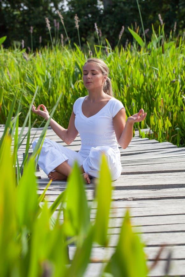 Le yoga för blond flicka för 20-tal praktiserande i gröna surrondings royaltyfri fotografi