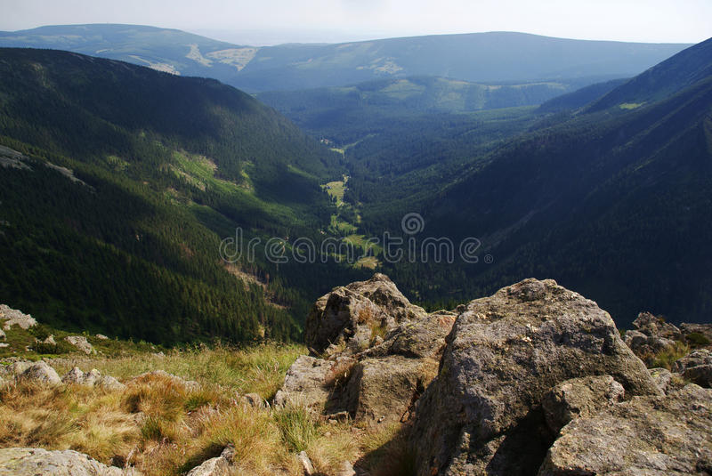 Download Lea In Karkonosze Mountains Stock Image - Image of nspruce, nsummer: 22948583