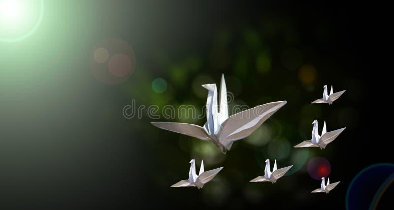 Leader paper birds stock photo