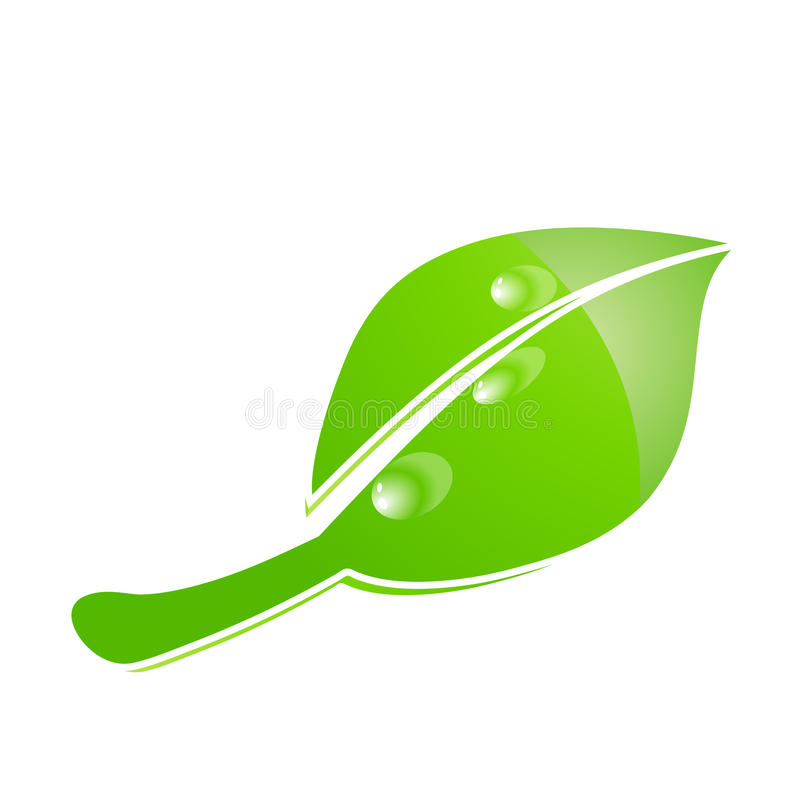 Leaf. Green shiny leaf with bubbles stock illustration