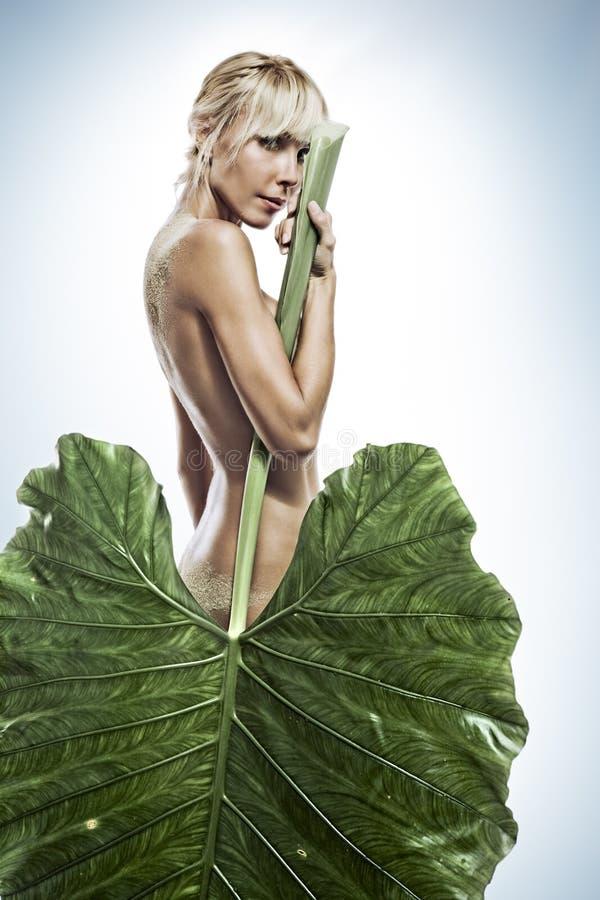With leaf stock photos