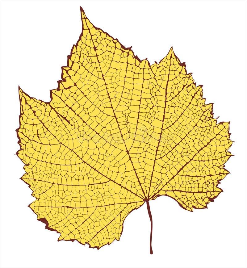 Free Leaf Royalty Free Stock Image - 18678406