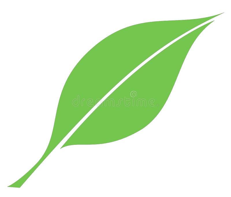 Leaf stock illustration