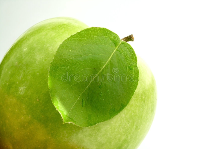 Download Leaf & apple stock photo. Image of green, background, appetizing - 120386