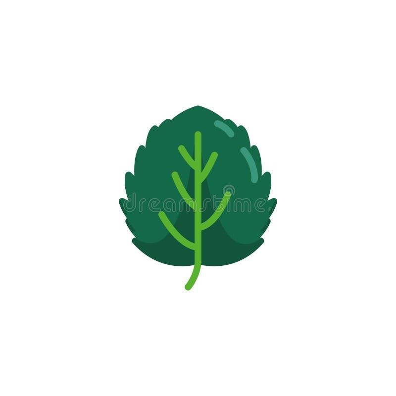 Leaf of aspen tree flat icon. Vector sign, Aspen leaf colorful pictogram isolated on white. Symbol, logo illustration. Flat style design vector illustration