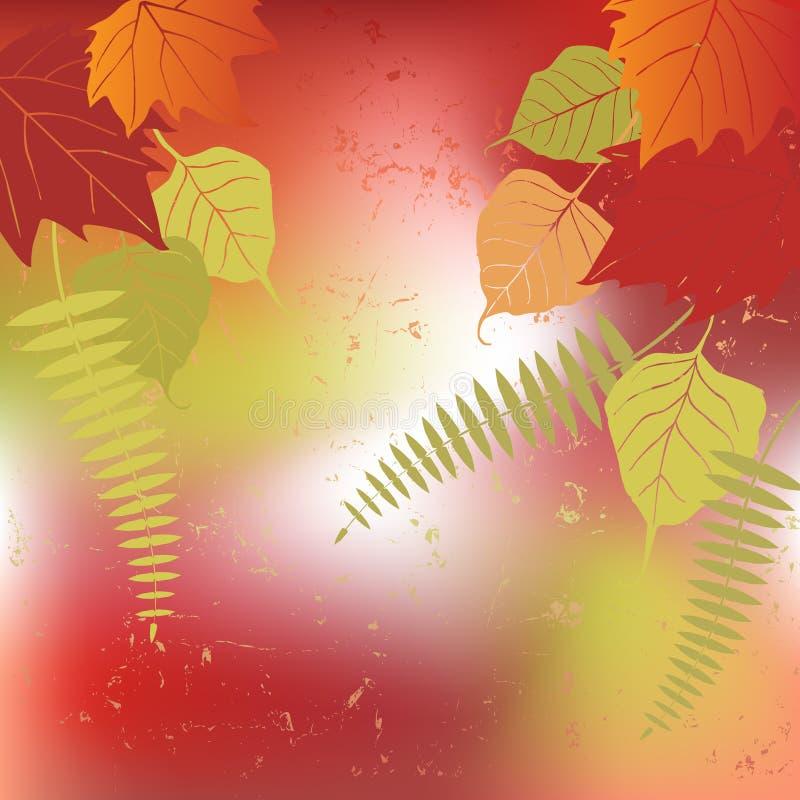 Download Leaf, Autumn - Vector Background Stock Vector - Image: 33388422