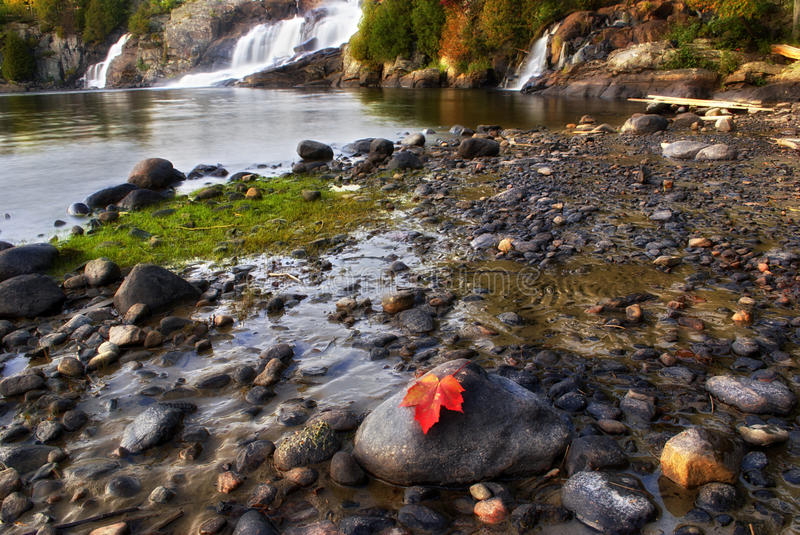 Download Leaf At The Bottom Of High Falls Stock Photo - Image: 33155806