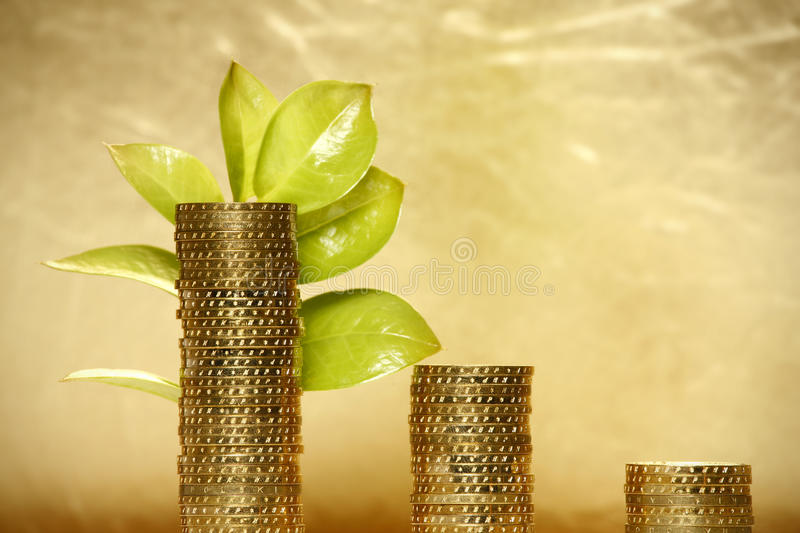 Leaf and Coins. Nice fresh leaf is growing from the coins stock photo
