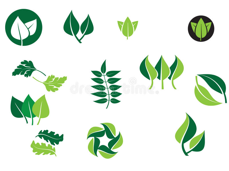 Download Leaf designs stock vector. Illustration of environmentally - 12988153