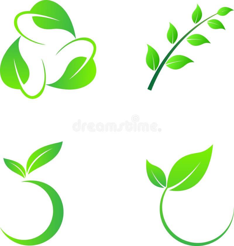 Leaf elements vector illustration