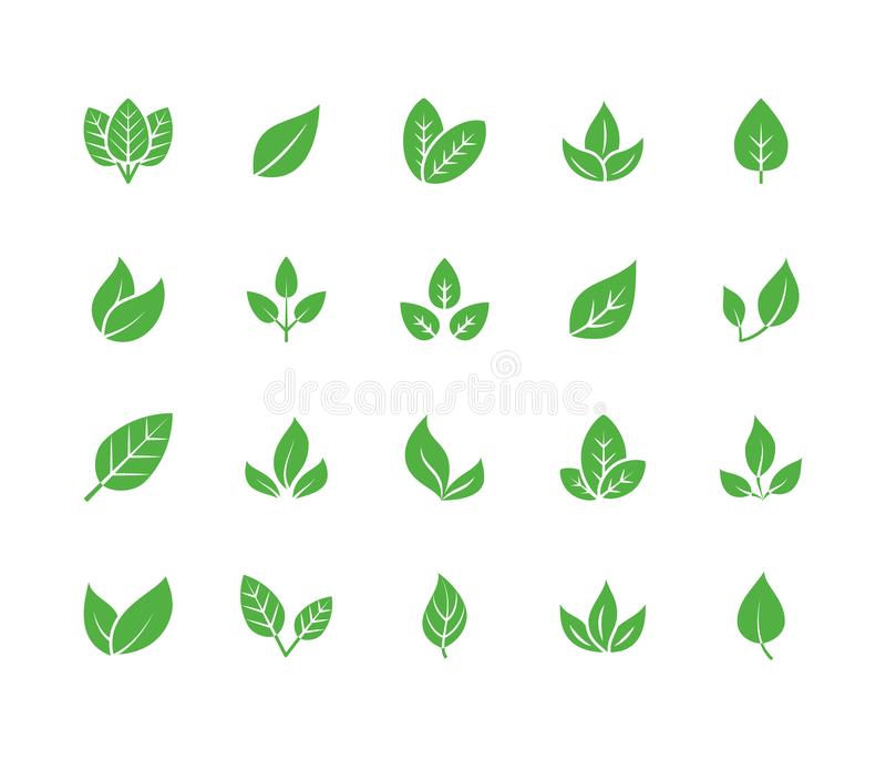 Leaf flat glyph icons. Plant, tree leaves illustrations. Signs of organic food, natural material, bio ingredient, eco. Emblem. Solid silhouette pixel perfect vector illustration