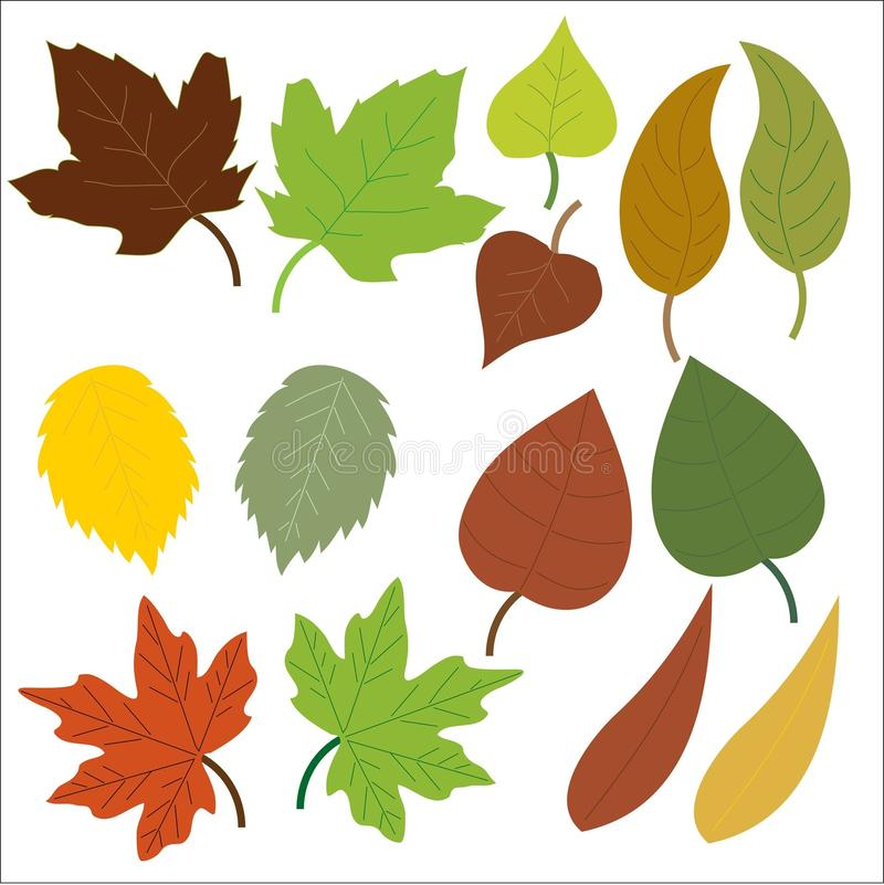 Leaf, Flower, Flora, Clip Art royalty free stock photo