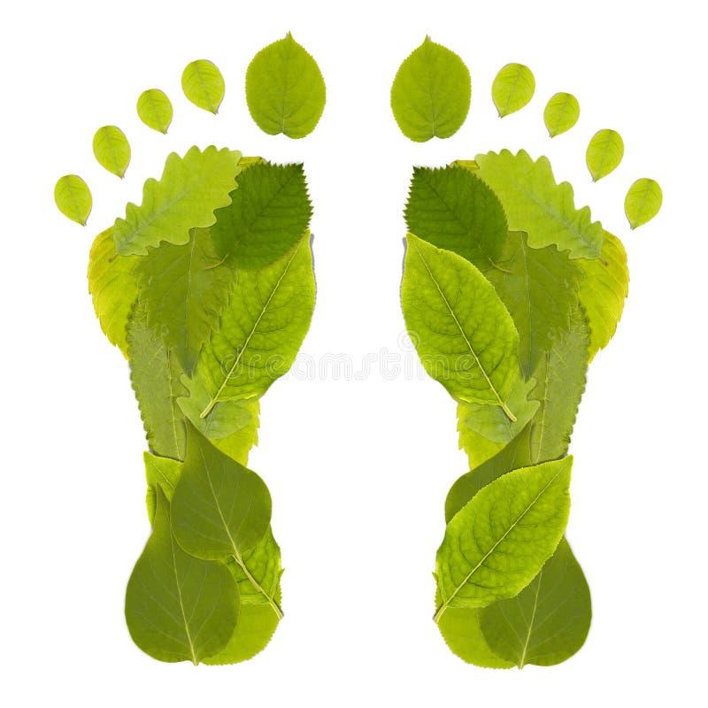 Leaf Footprint royalty free stock photos