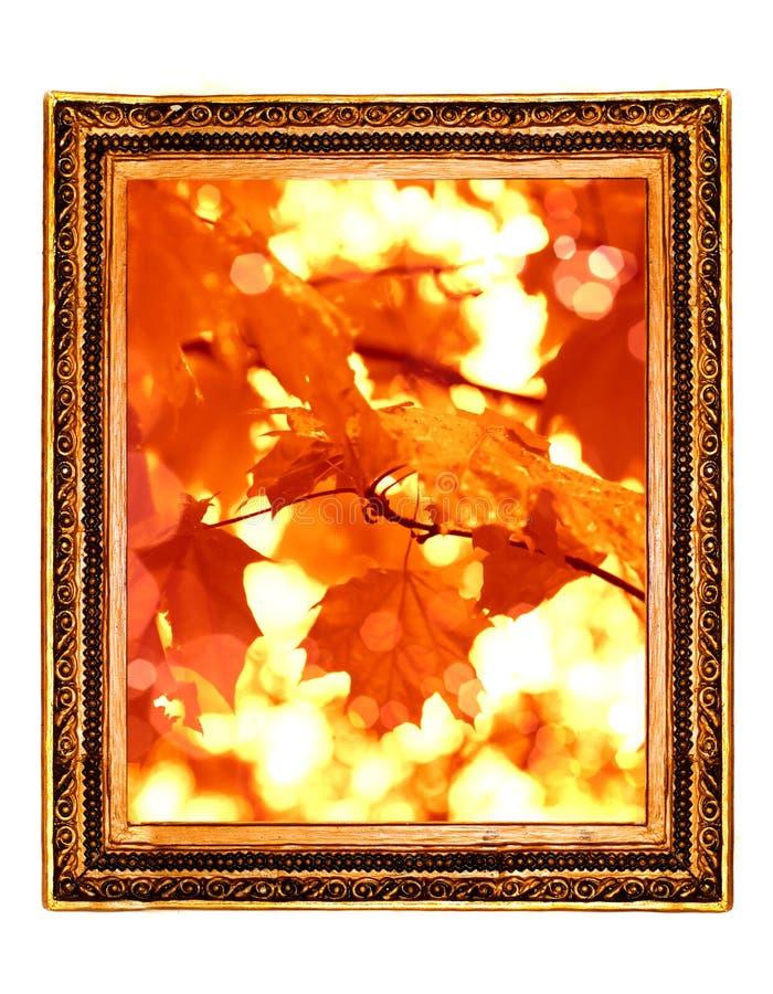 Leaf Framework In Antique Royalty Free Stock Photos