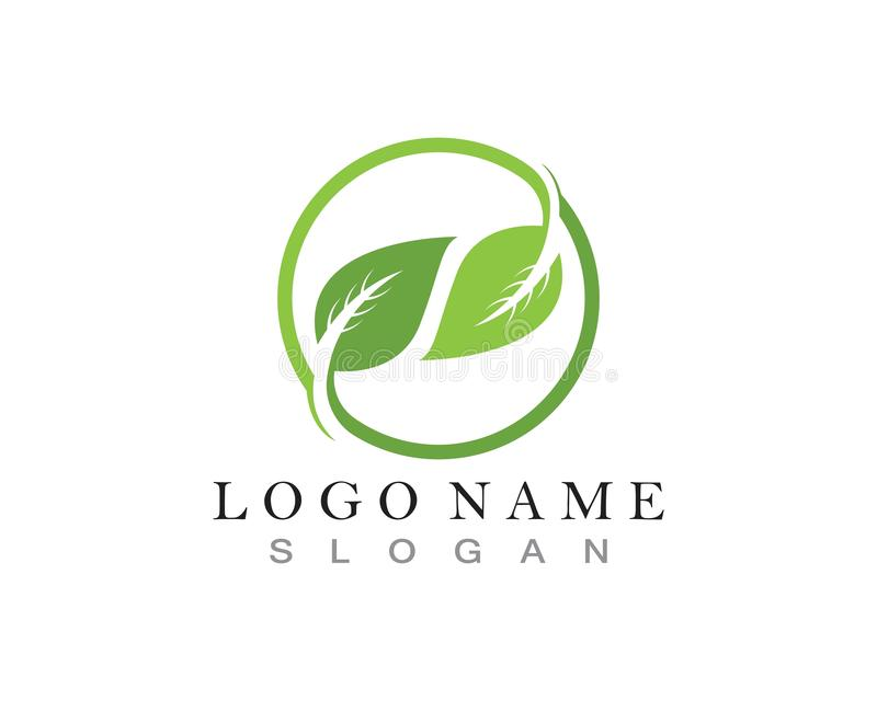Leaf green nature logo and symbol template.  royalty free illustration
