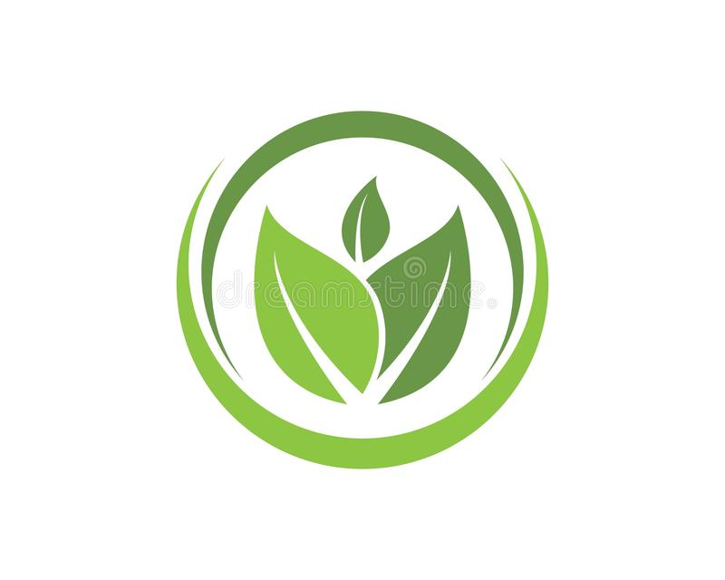leaf green nature logo and symbol template Vector royalty free illustration