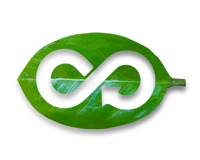 Leaf with hole of arrow infinity recycling shape, circular economy. Green Eco-friendly and circular economy concept, leaf with hole of arrow infinity recycling royalty free stock images