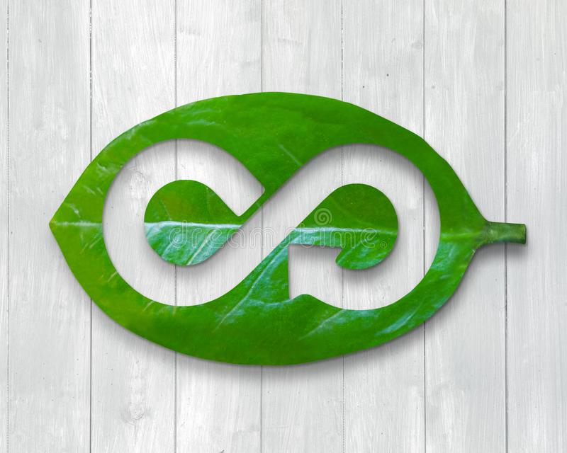 Leaf with hole of arrow infinity recycling shape, circular economy. Green Eco-friendly and circular economy concept, leaf with hole of arrow infinity recycling royalty free stock image