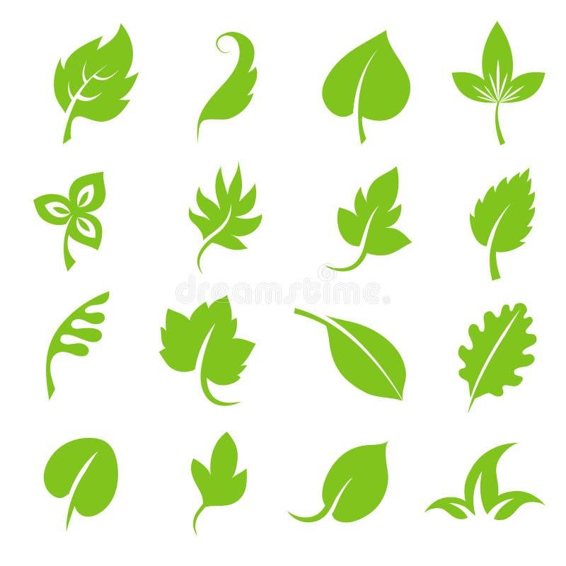 Leaf icon set. Fresh green leaves various shapes isolated on white background royalty free illustration