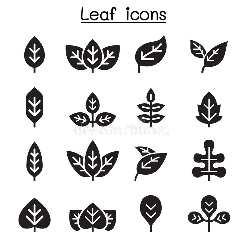 Leaf icon set. Vector illustration graphic design stock illustration