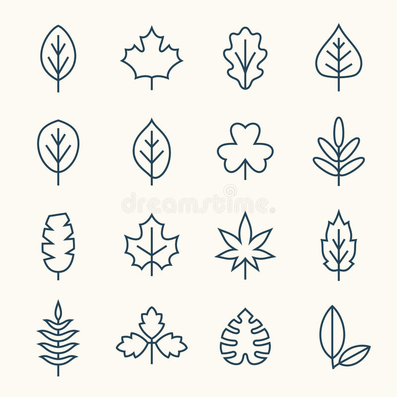 Leaf line icons vector illustration