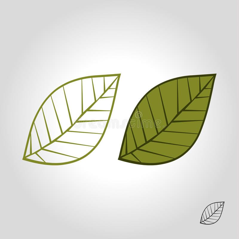 leaf logo, icon and symbol vector illustration vector illustration