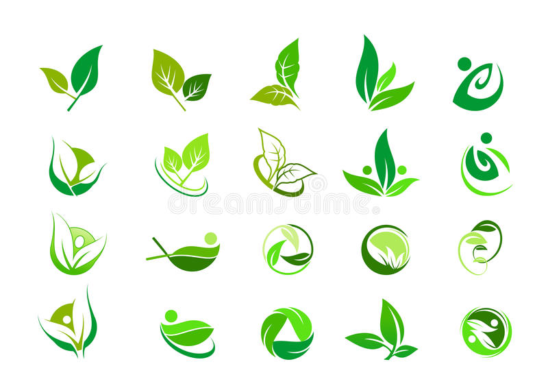 Leaf, logo, organic, wellness, people, plant, ecology, nature design icon set vector illustration