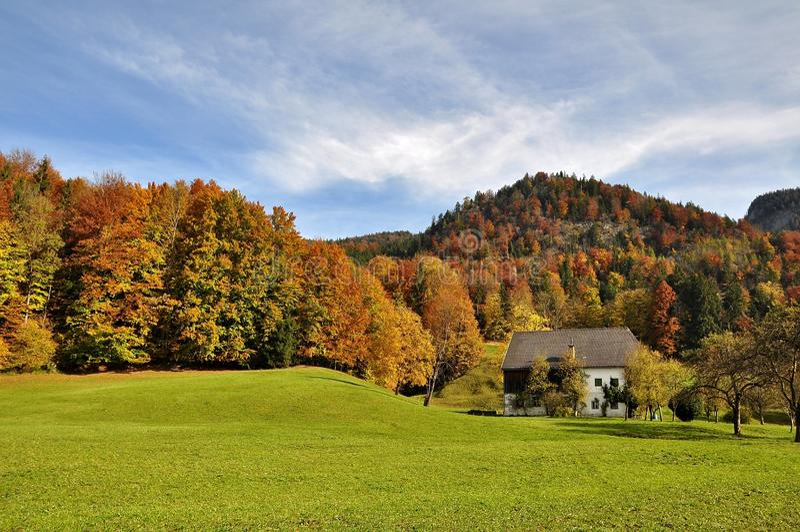 Leaf, Nature, Sky, Autumn Free Public Domain Cc0 Image