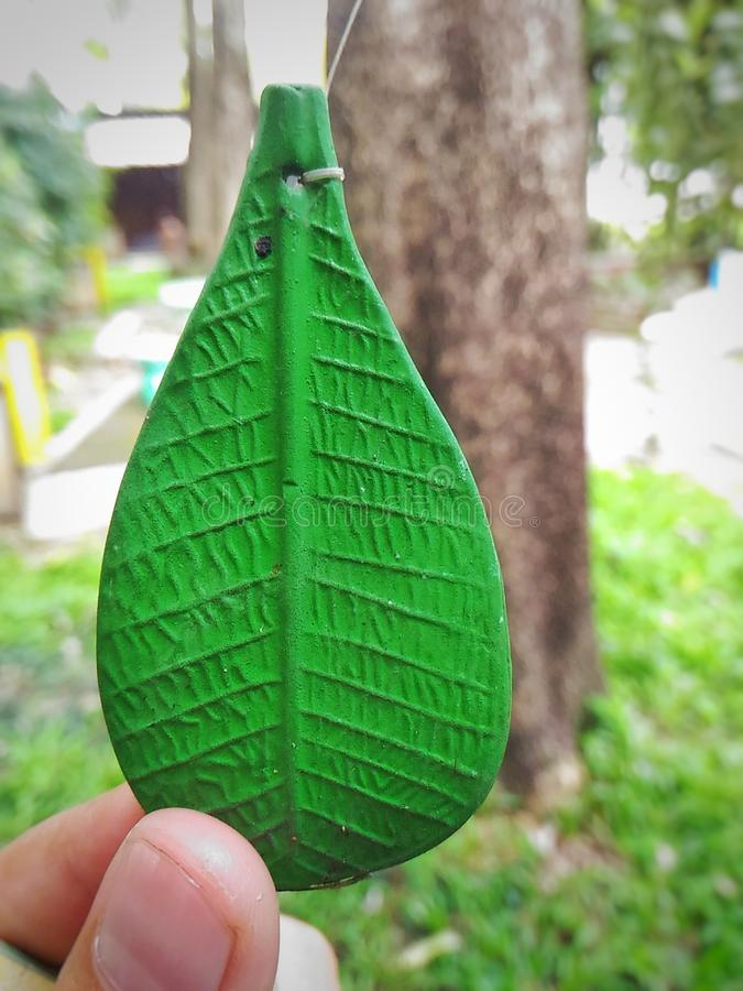 A leaf. Is an organ of a vascular plant and is the principal lateral appendage of the stem stock photo