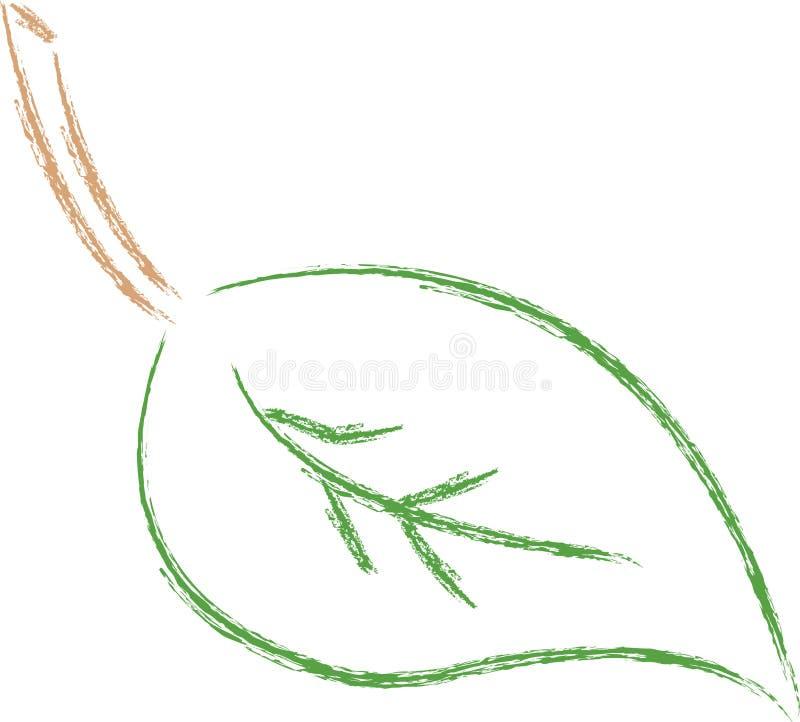 Leaf outline. Outline or abstract green leaf