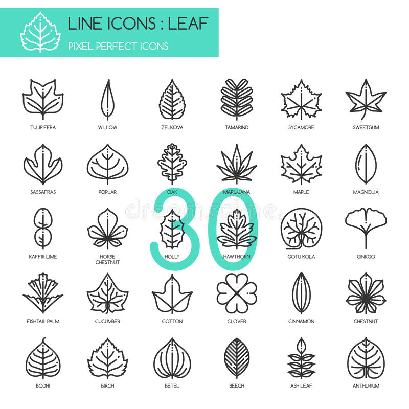 Leaf , pixel perfect icon royalty free illustration