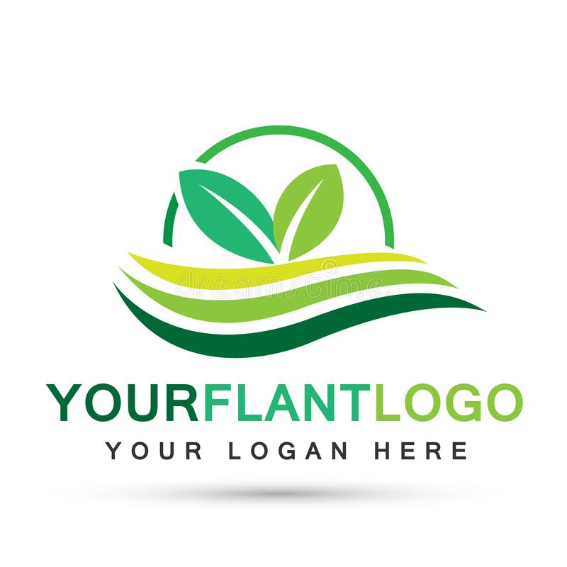 Leaf plant globe logo ecology water waves wellness green leaves nature people symbol icon vector designs on white background. Leaf plant globe logo ecology sun royalty free illustration