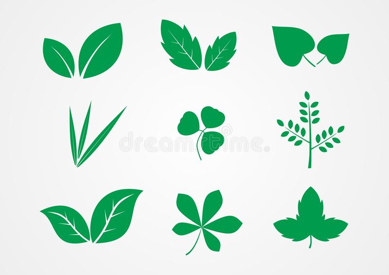 Leaf and plant icon vector royalty free stock photography