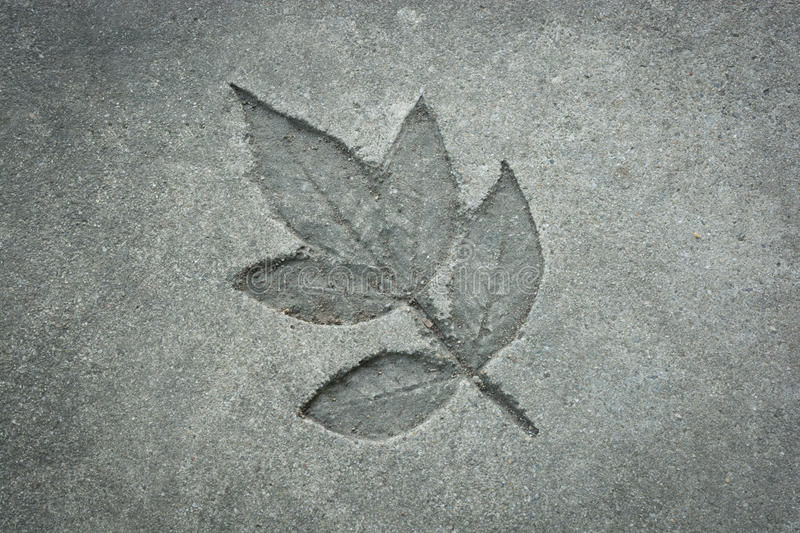 Leaf print on cement texture. Natural style royalty free stock photography