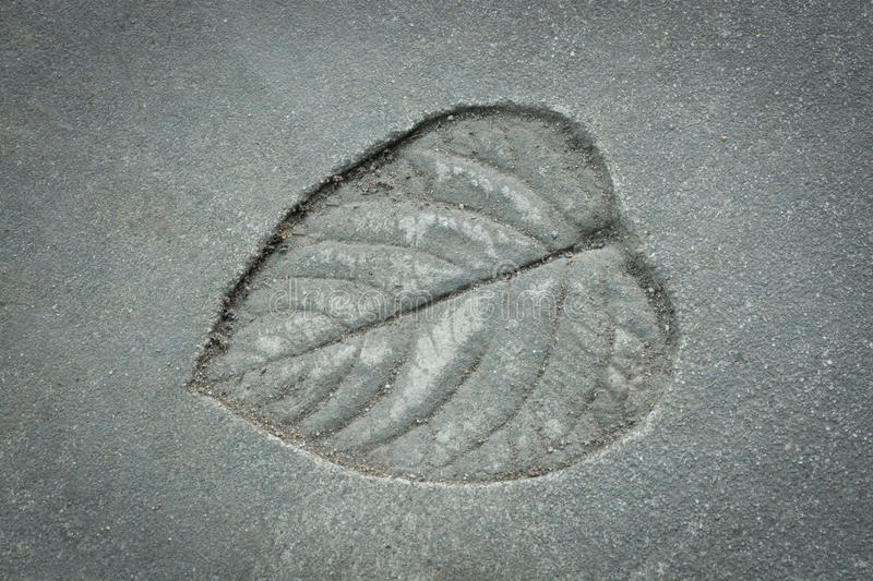 Leaf print on cement texture. Natural style stock image
