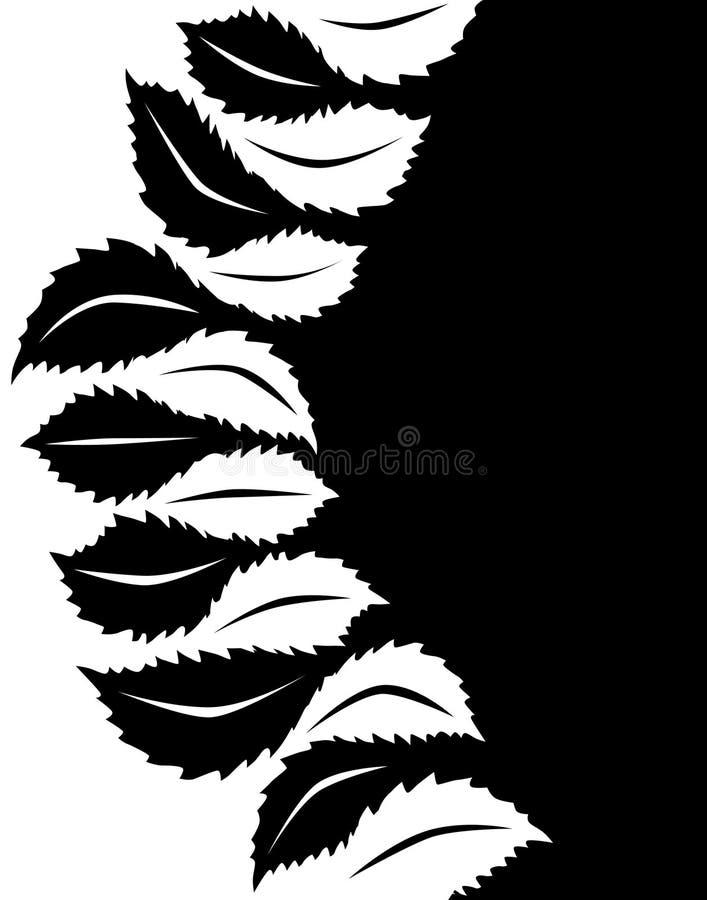 leaf till vektor illustrationer